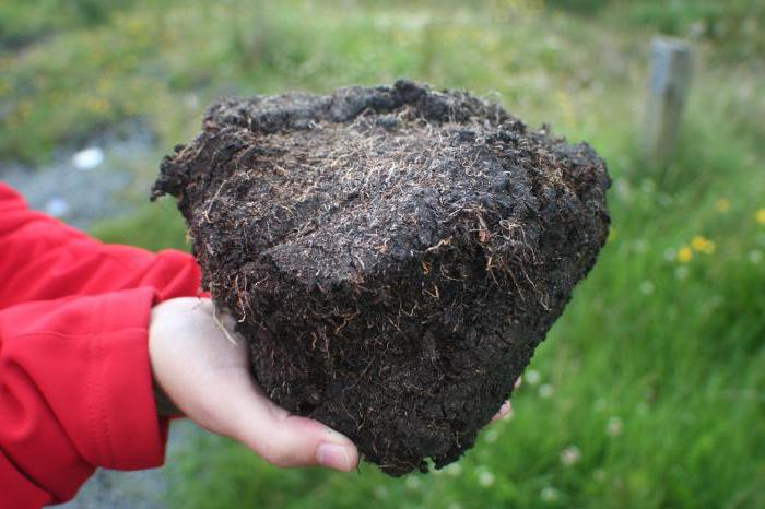 soil types of Krasnodar region