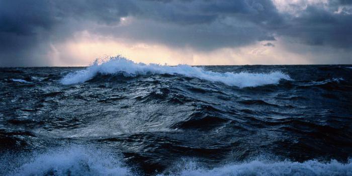 бассейн тихого океана реки