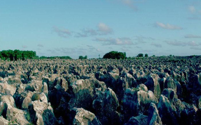 Country Nauru