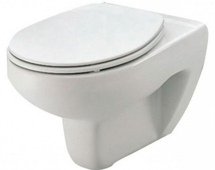 toilet hanging roca reviews