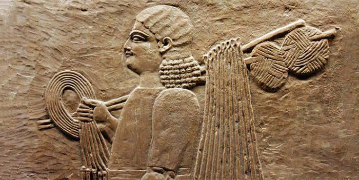 история вязания спицами и крючком Sylru