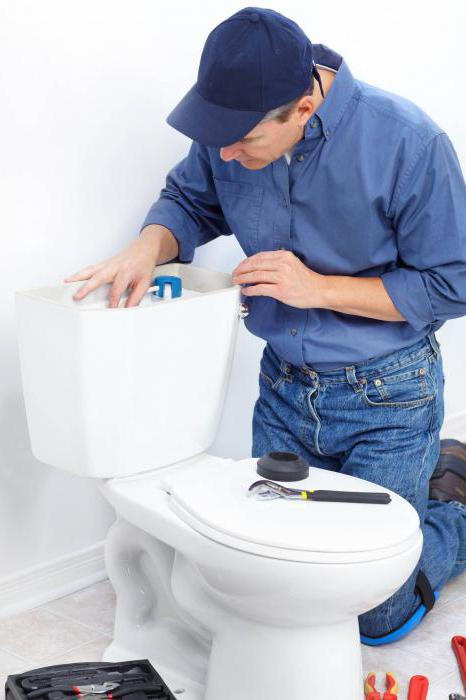 what does a sewer plug for debtors look like