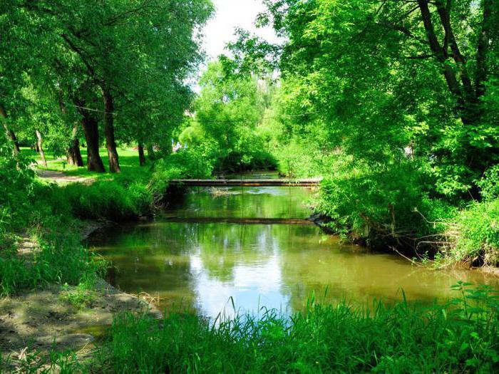 долина реки сетунь фото