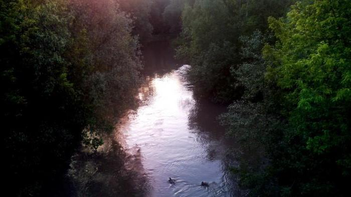 долина реки сетунь