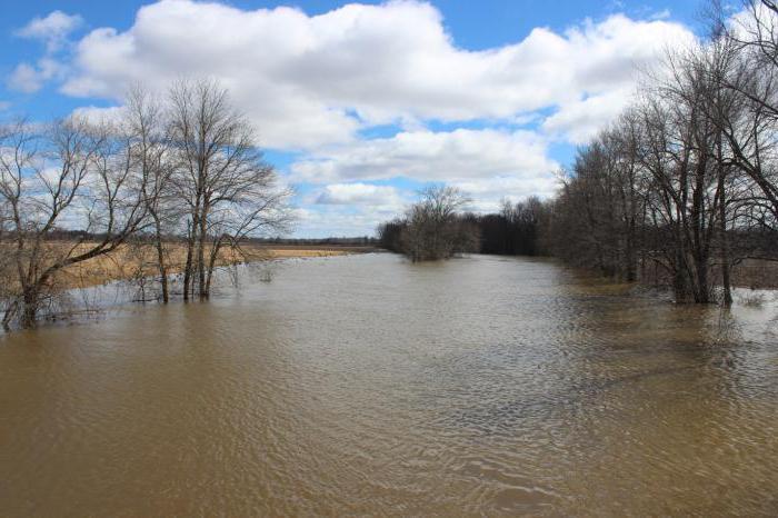 внезапный подъем уровня воды в реке