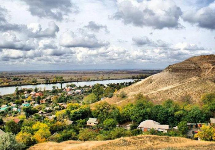 животные занесенные в Красную книгу Ростовской области