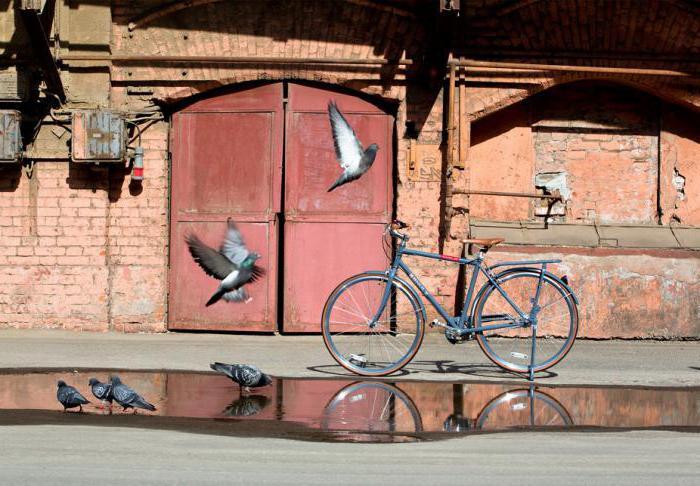 Велосипеды Shulz характеристики