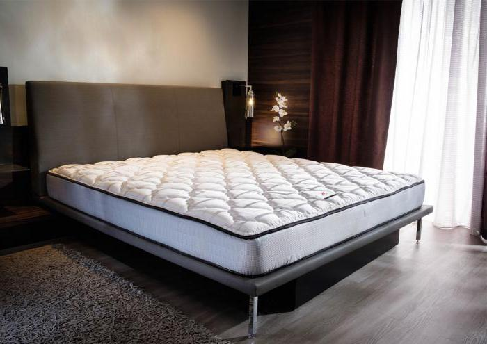 Ivanovo textile mattress holcon or strutoplast reviews