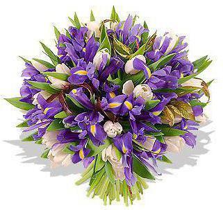 wedding bridal bouquet tulips