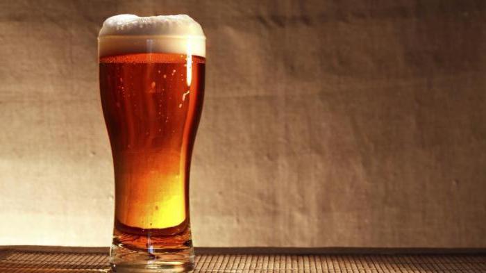 можно пить пиво каждый день