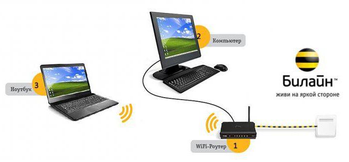 provider beeline home internet conditions