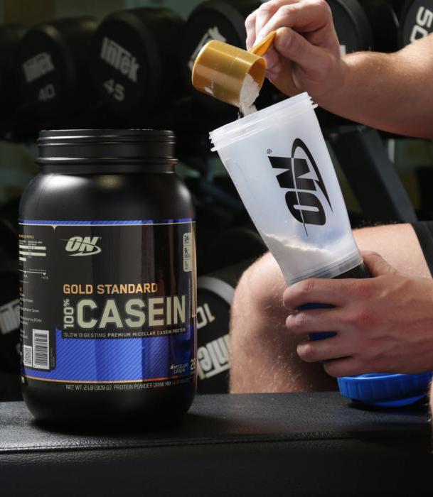 protein casein