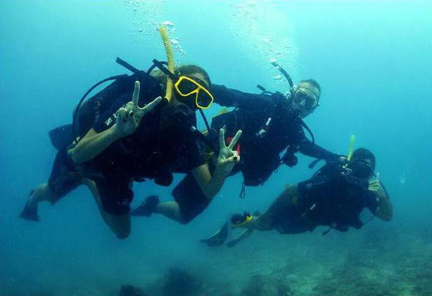 diving description