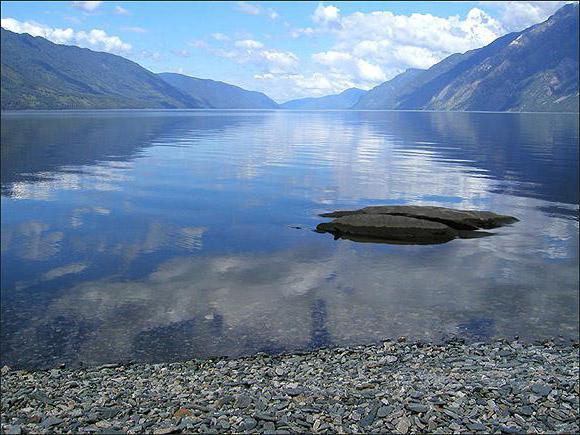 Altai Lake Teletskoye camp site