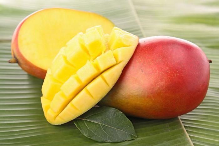 где растет манго фрукт