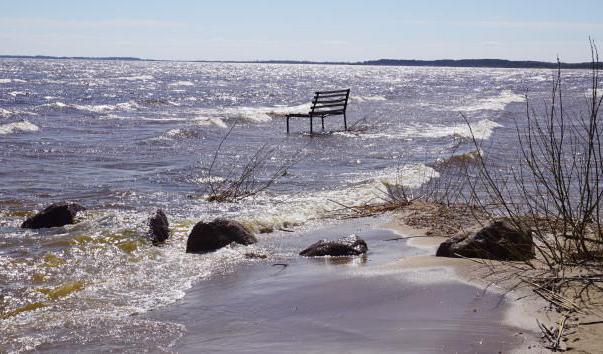 чудское озеро где находится в россии