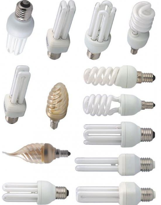 kinds of fluorescent lamps