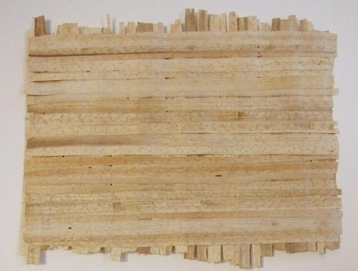 papyrus history