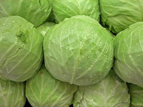 cabbage pill recipe