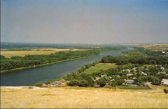 где находится приток реки дон