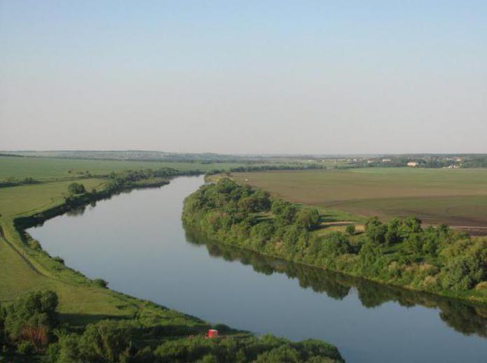 где находится исток реки дон