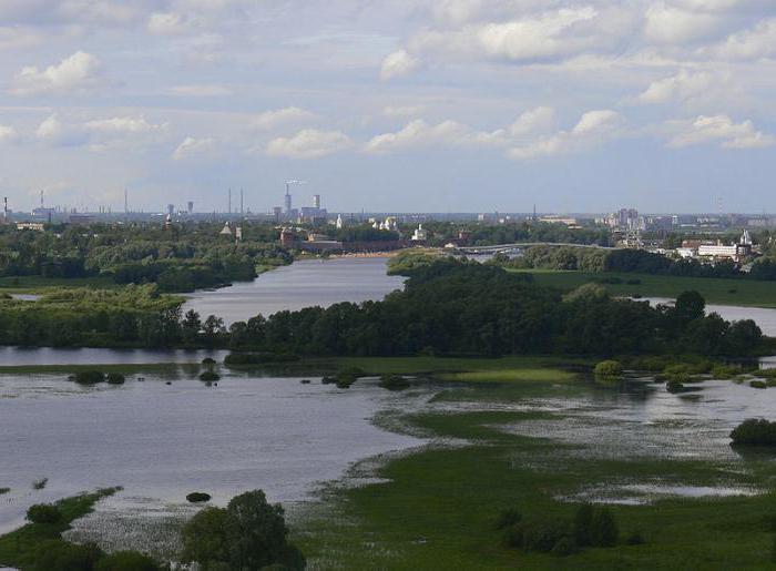 где находится исток озера Ильмень