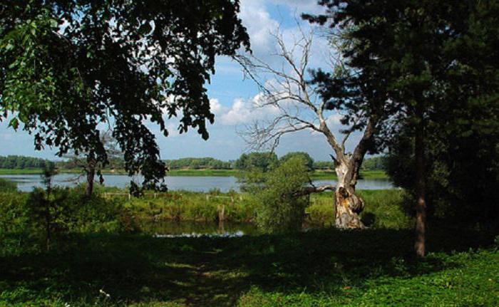 ilmen lake where is in russia