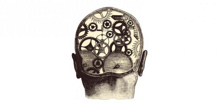ум человека