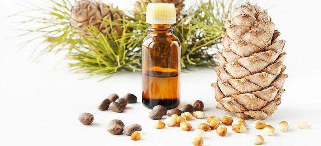 кедровые орехи польза и вред для женщин