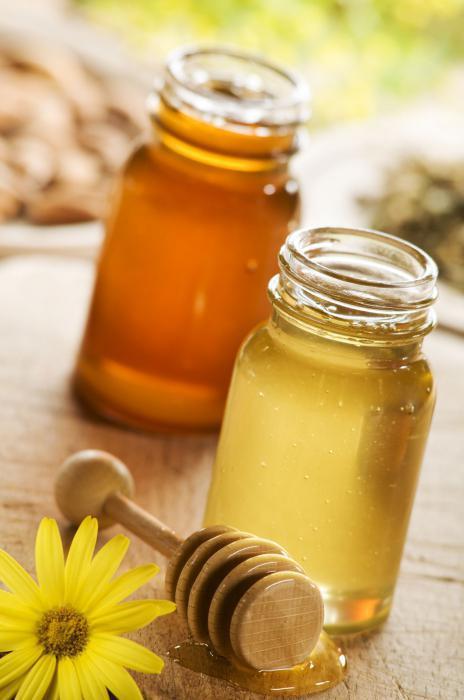 имбирь мед лимон рецепт для иммунитета отзывы