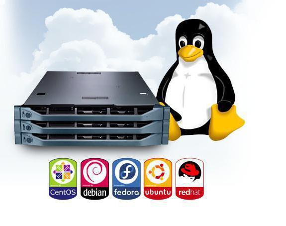 linux review
