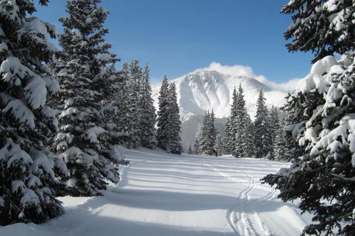 зима описание природы