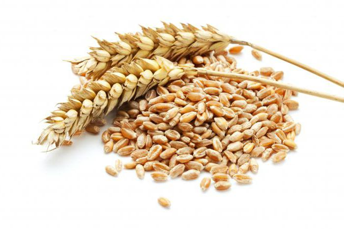 where is gluten contained and how is it harmful