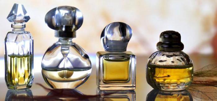 what dreams in perfume