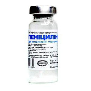 brain syphilis treatment