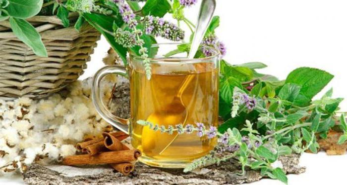 Tea Evalar Bio Kidney
