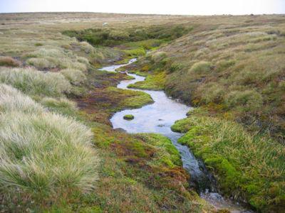 Куда текут реки