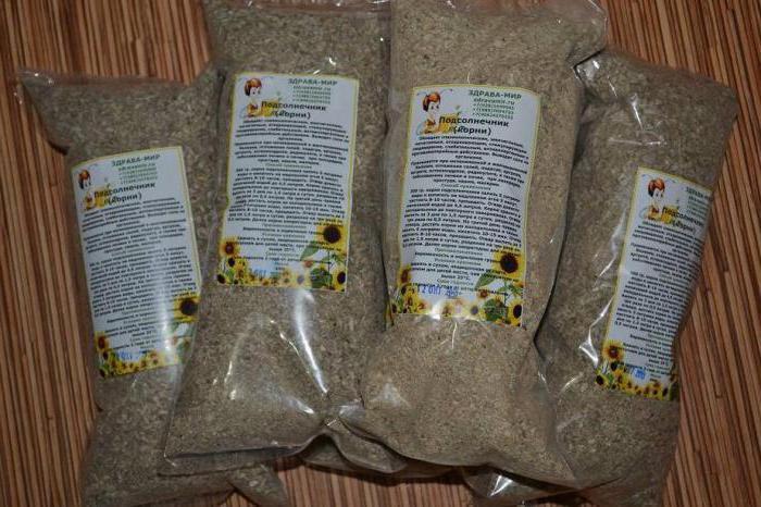 корень подсолнуха лечебные свойства и применение