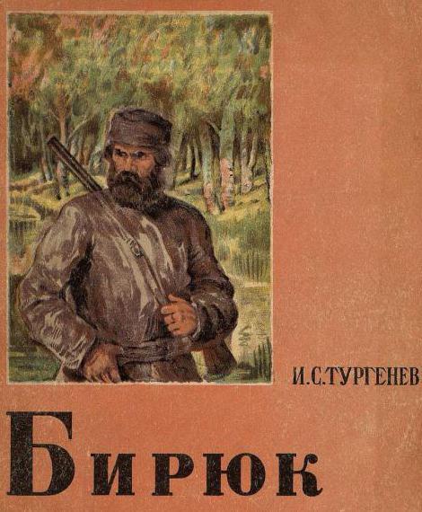 What is the main theme of the story Biryuk 6 class