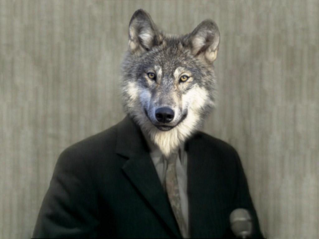 гости фото с головой волка было первое