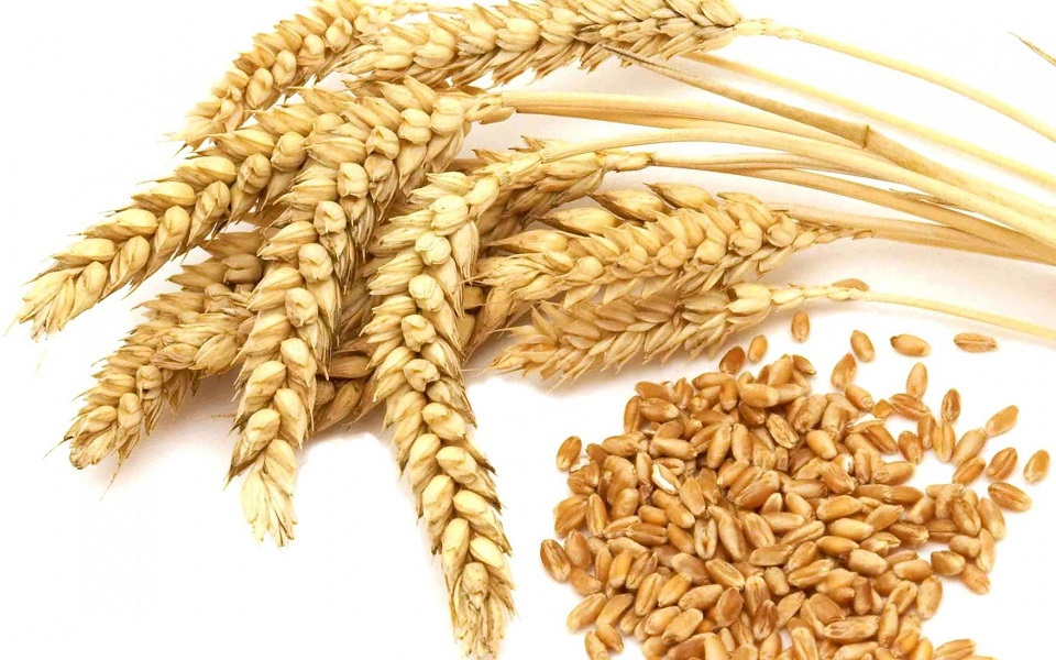 How to Cook Kutya from Wheat