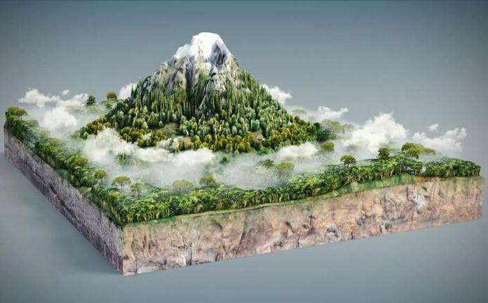Altitude Plants