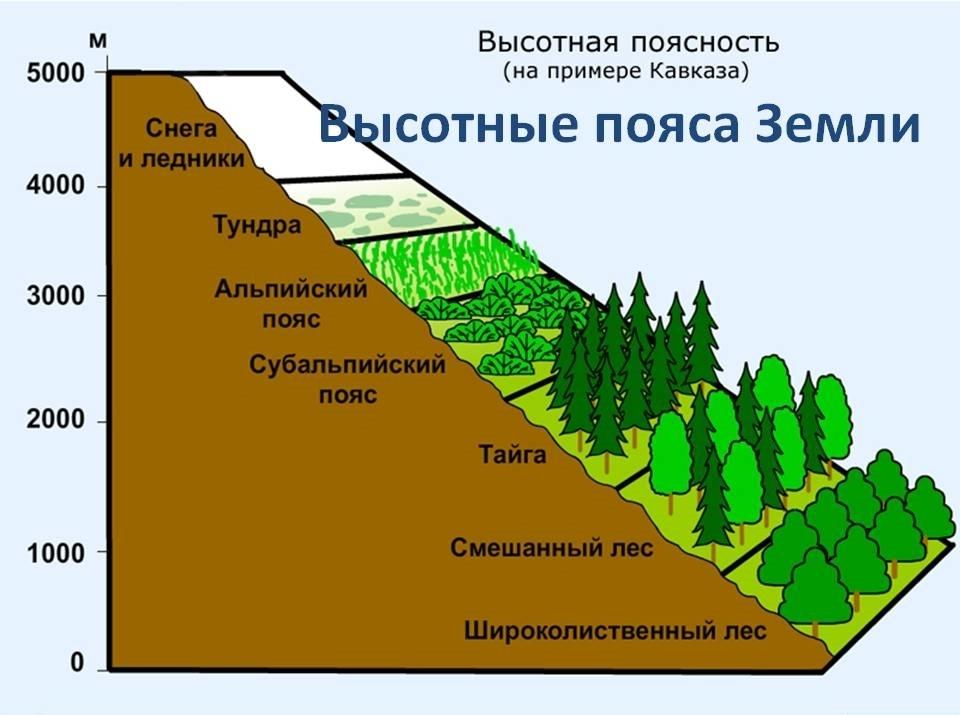 Altitude zone of Russia
