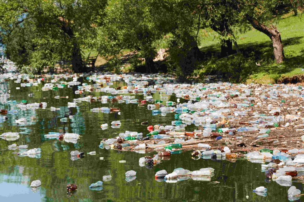 Экологические проблемы водоемов края