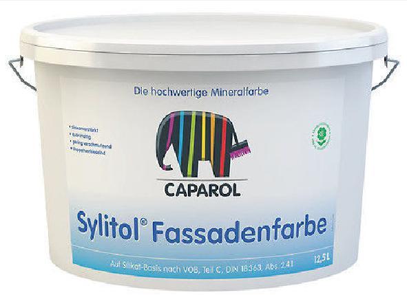 Facade silicate paint
