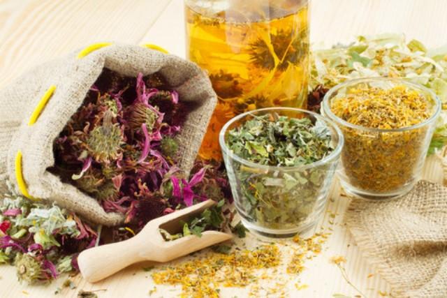 cough herbs