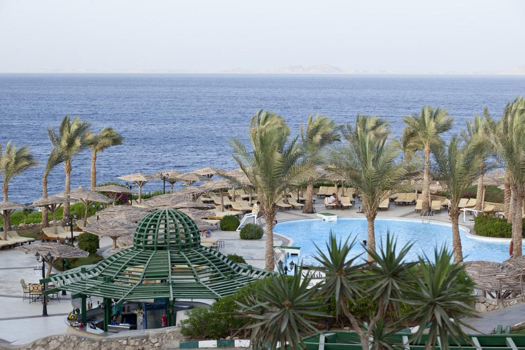 Coral beach resort tiran 4 фото