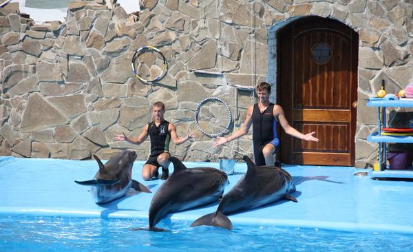 Dolphinarium in Yeisk