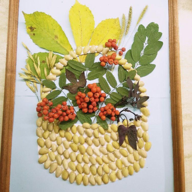 признак странного картинки из семян и листьев концерте все