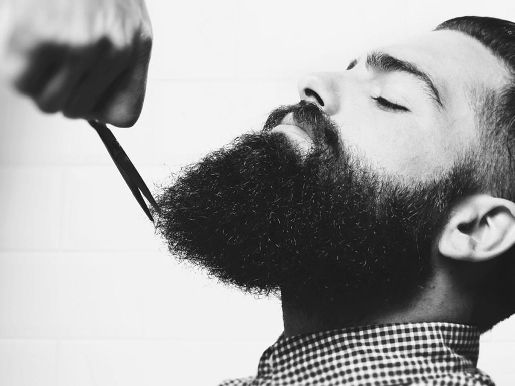 делать, если стрижка бород в картинках работа